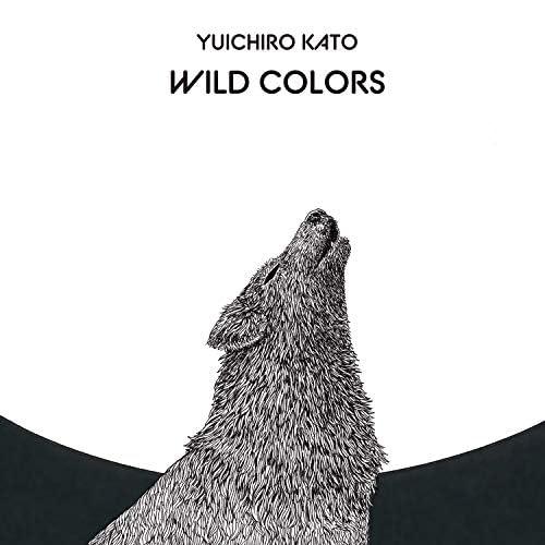 Yuichiro Kato