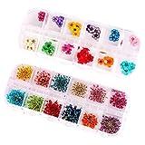 Frcolor 2 Box von 12 Farbe 3D Nail Art Sticker Echte Getrocknete Blumen Nagelkunst Aufkleber...