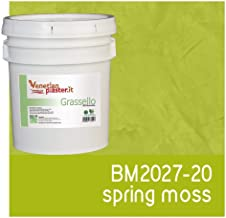 FirmoLux Grassello Authentic Venetian Plaster   Polished Plaster   Made in Italy from Lime, Marble & Other Natural Aggregates   Green Tone Colors (13)   Color: BM2027-20 Spring Moss