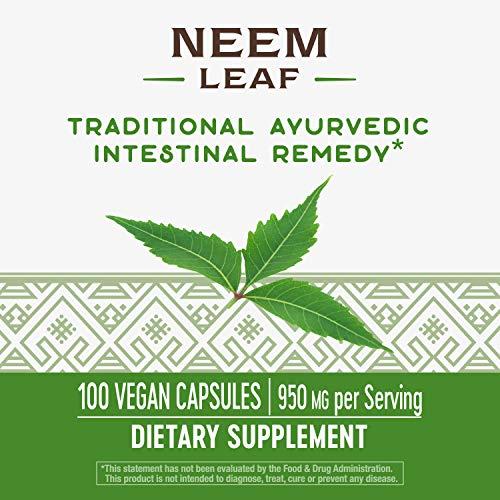 Nature's Way Premium Herbal Neem Leaf, 950 mg per serving, 100 Capsules