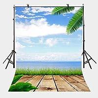 HD 7x10ft青空白い雲の背景オーシャンサイド木製トレイル自然写真背景とスタジオ写真背景小道具LYLX256