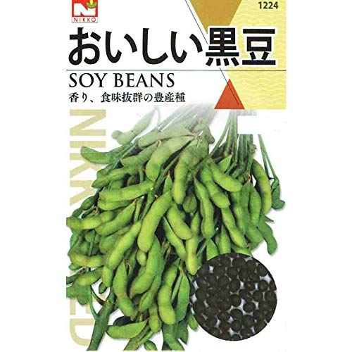 【種子】 枝豆 おいしい黒豆