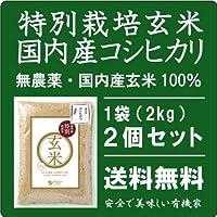 無農薬 コシヒカリ玄米2kg×2個★国内産特別栽培コシヒカリ玄米100%★無添加