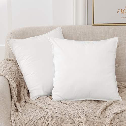 Deconovo Fundas para Cojines de Almohada del Sofá Cubierta Suave Decorativa Protector para Hogar 60 x 60 cm 2 Piezas Blanco