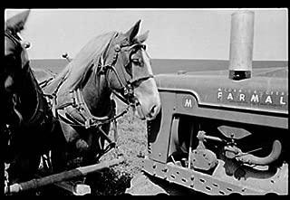 HistoricalFindings Photo: Jasper County,Iowa,IA,Farm Security Administration,FSA,Farm Life,7