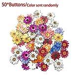 Ganquer - Botón de ganquer (50 unidades, 25 mm), diseño de flores de madera, varios colores, accesorios hechos a mano, decoración de 2 agujeros