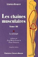 Les chaînes musculaires - Tome 3, La pubalgie de Léopold Busquet
