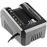 GREENCUT CBT560L - Cargador para baterias de litio de 2,0Ah y 4,0Ah,...
