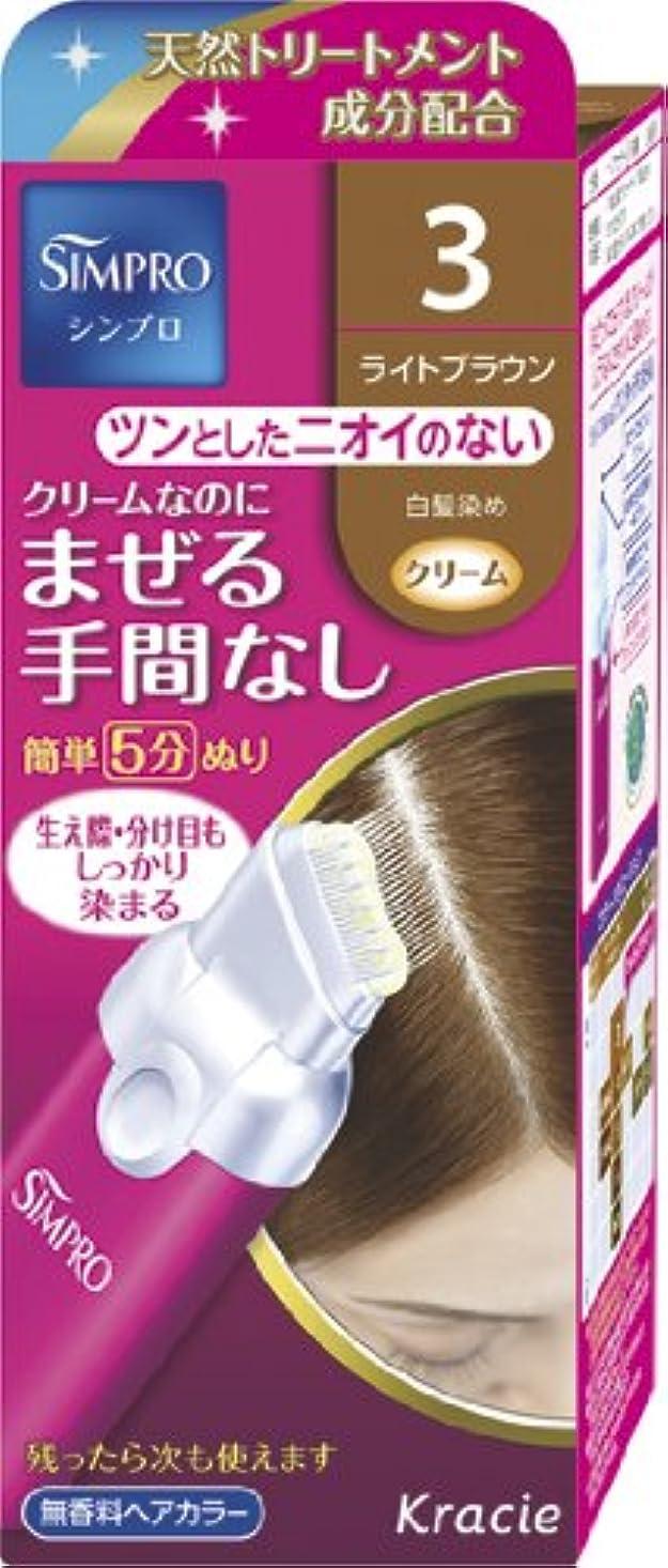 成人期発音する荷物シンプロ ワンタッチ無香料ヘアカラー 3