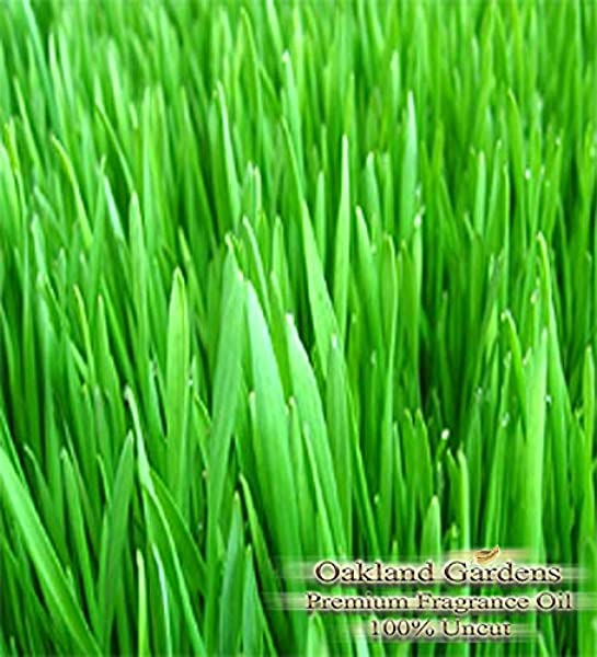 F Fresh Cut Grass Reed Diffuser Oil By OG Slightly Sweet A Fresh Clean Hint Of The Great Outdoors Scent Of Freshly Mowed Grass On The Air 4 Oz 120 Ml