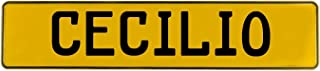 Vintage Parts 615963 Wall Art (Yellow Stamped Aluminum Street Sign Mancave Cecilio)
