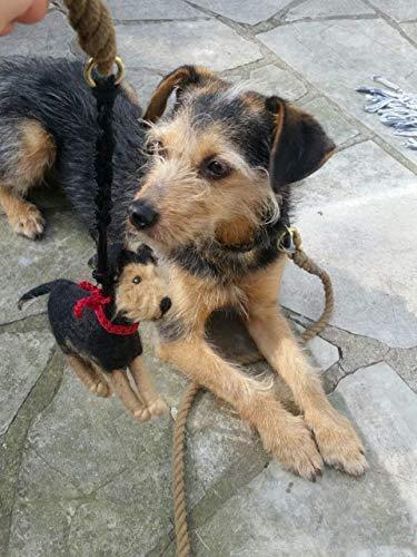 Kotbeutelspender aus Filz nach dem Foto deines Hundes, individuelles Geschenk für Hundebesitzer, Täschchen für Hundeleine