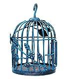 VintFlea Jaula de pájaros Decorativos de Hierro Forjado decoración Artesanal de Regalo India del Arte del Estilo de la Vendimia aviario al Aire Libre