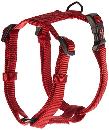 Top Paw Adjustable Dog Harness
