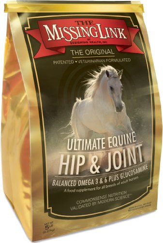 Best Joint Supplement For Adult Horses