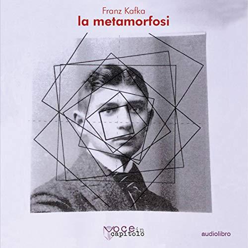 La Metamorfosi copertina