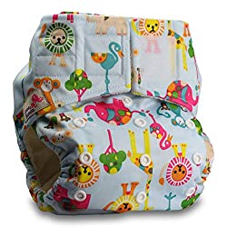 Little Bloom Pocket Diapers Review