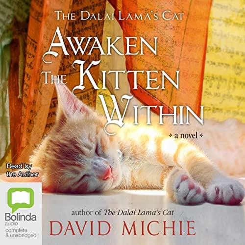 Awaken the Kitten Within cover art