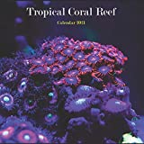 """Tropical Coral Reef Calendar 2021: Wall And Desk Calendar 2021, Size 8.5"""" x 17"""" When Open 