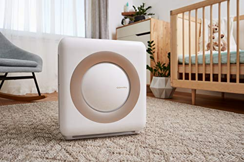 best air purifier for whole house