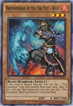 Best brotherhood of the fire fist wolf Reviews