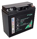 PATONA Premium Batteria al piombo AGM 12 V 22 Ah VRLA senza manutenzione, 1800 cicli