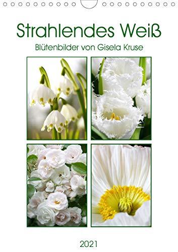 Strahlendes Weiß Blütenbilder...