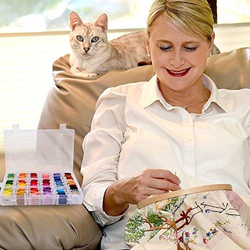 刺しゅう糸刺繍系セット108色HailiCare刺しゅう針32本抜糸ツール2本巻いた刺しゅう系ミサンガ組みひもクロスステッチきれいに整理刺繍針セット収納ボックス収納便利カラーが豊富で綺麗まとめ買いオリジナルセットカラフル