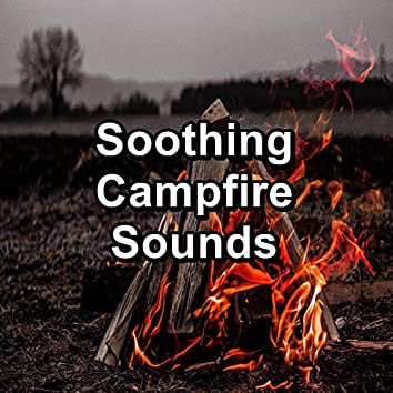 Soothing Campfire Sounds