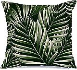 BONRI Fundas de almohada decorativas de poliéster, diseño de palmas tropicales de Rainforest Hawaii, naturaleza natural, verano, safari, hojas de viaje, selva, exótico, cuadrado, 45 x 45 cm