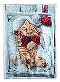 Banzaii Coperta Invernale, di Velluto con Stampa Digitale da Divano Calda e Morbida 130x160 cm