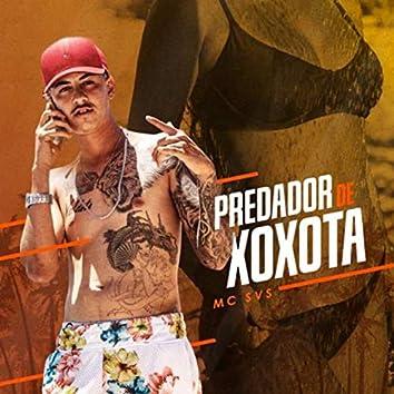 Predador de Xoxota