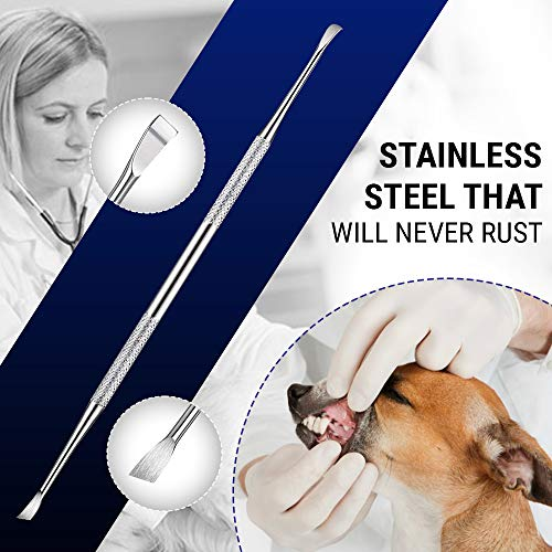 Dental Tooth Scaler Plaque Remover (Perfect for Cats and Dogs) - 6.5 Inch Double Header Tarter & Plaque Tool Remover/ scraper/ pick - Stainless Steel That Will Not Rust- Teeth Cleaning Tools / picks