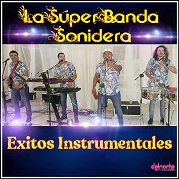 Exitos Instrumentales (Pasito Cachero, Mueve las caderas, La Chola, Lagrimas de Escarcha, Traicionera, Nunca lo Espere de Ti)