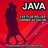 Les plus belles danses de salon : Java