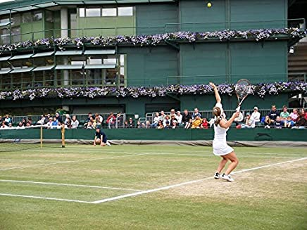 Home Comforts Simona Halep Tennis Woman Wimbledon Professional Vivid Imagery Laminated Poster Print 24 x 36
