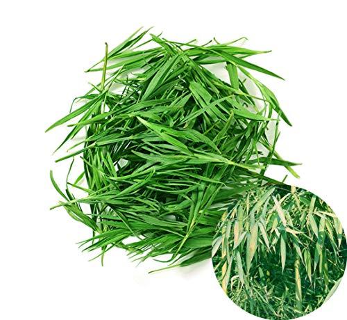 TooGet Wilder Bambusblatttee, Natürlicher Getrockneter Bambus Verlässt Losen Tee, Mehr Als 30 Schalen - 60g
