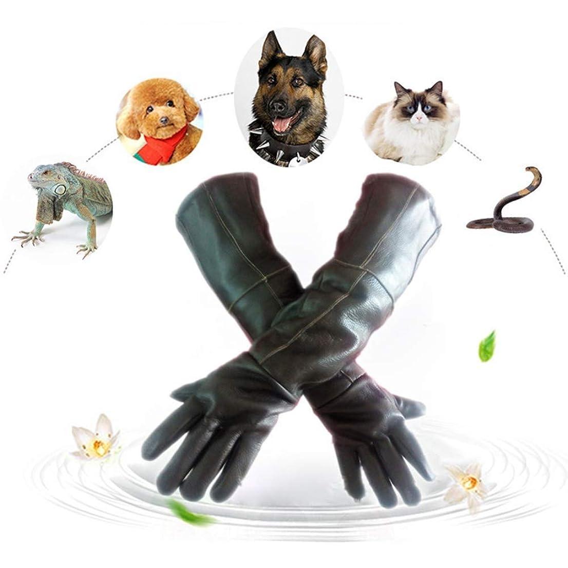 すすり泣きレッスン価値のないペットアンチバイトグローブ ロング厚手レザー アンチパンクノンスリップ 防水 トレーニング 犬 動物園 手保護 60cm