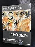 Pinot Gallizio nell'Europa dei disimmetrici. Catalogo della mostra (Torino, 1992). Ediz. illustrata (Biblioteca d'arte)