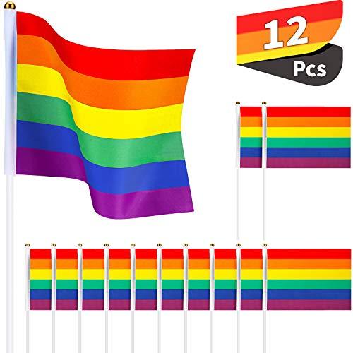 12 Packungen Homosexuell Stolz Regenbogen Flaggen Handgehalt Stock Flagge Hand Fahne Regenbogen Fahne Banner für Stolz Festival Karneval, 14 x 21 cm