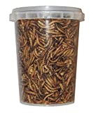 Gusanos de harina, 500ml liofilizados/secos, para alimentar reptiles, tortugas, erizos, pájaros