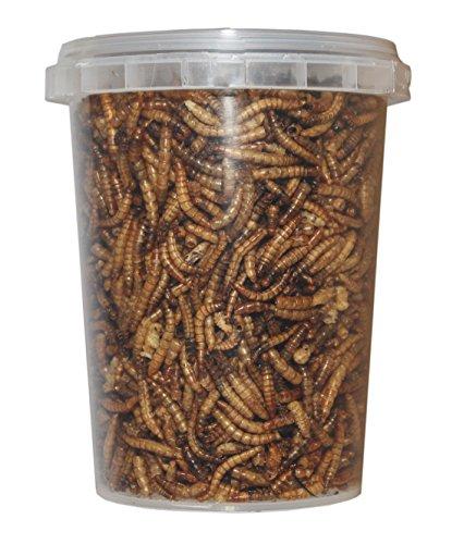 TropicShop 500 ml Mehlwürmer gefriergetrocknete/getrocknet | Reptilienfutter, Schildkrötenfutter, Futtertiere Igelfutter
