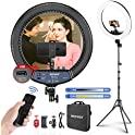 "Neewer 18"" LED Ring Light Kit, 2.4G Remote & USB Charging"