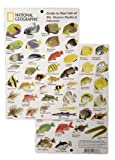 National Geographic - Guide to Reef fish of the Western Pacific & Indonesia - Fish ID Card (6 in by 9 in)