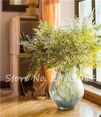Multi Color Valentine Herbe de semences jardin vivaces fleurs Bonsai semences de plantes fleurissantes intérieur Plantes exotiques pots de fleurs 5 50pcs