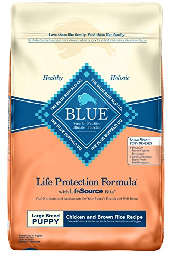 BLUE Life Protection Formula Puppy Large Breed Chicken and Brown Rice Dry Dog