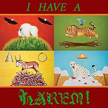 I Have a Harem!