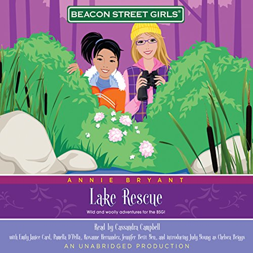 Lake Rescue cover art