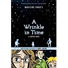 Wrinkle in Time, A: The Graphic Novel