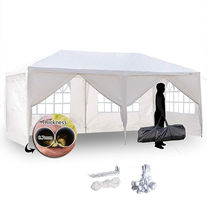 VINGLI 10' x 20' Canopy Tent with 6 Removable Sidewalls,Outdoor Party Wedding Tent Pavilion, Event Dancing Party Gazebo Canopy, Free Stainless Stake and Nylon Ropes,Bonus Carrying Bag